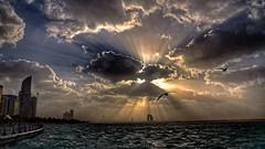 Light (Sanjiban2011) Tags: abudhabi abudhabicorniche uae unitedarabemirates clouds monsoonclouds cloudscape sunrays sky skyscape waterfront nature outdoor nikon d750 fullframe nikon24120