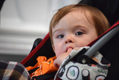 A Finger and a Stroller (MTSOfan) Tags: flynn grandson finger stroller mswalk miltonhersheyschool 15months tasty