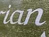 950. Vegetarian (thatianbloke) Tags: handpainted vegetarian lowercase serif