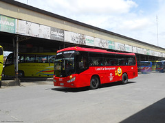 Land Car Inc. 185 (Monkey D. Luffy ギア2(セカンド)) Tags: daewoo bus mindanao philbes philippine philippines photography photo public enthusiasts society road vehicles vehicle