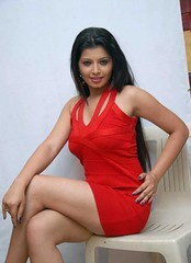 Indian Actress DISHA POOVAIAH Hot Photos Set-2 (12)
