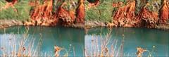 Cave di Bauxite, Otranto (bcANNAbc) Tags: cave di bauxite otranto salento lecce puglia meraviglie paesaggi