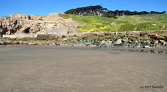 DSC_0279 (rachidH) Tags: scapes views pacific ocean sealrocks cliffhouse sutro baths tide lowtide lobos pointlobos oceanbeach sanfrancisco sf sanfran california rachidh nature