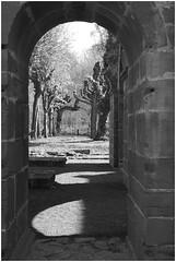 Sony *468 (KKS_51) Tags: sonyalpha7ii wetterau klosterarnsburg