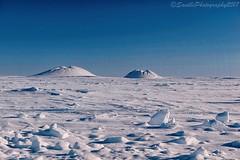 AUR_6389s (savillent) Tags: pingos tuktoyaktuk northwest territories canadai snow landscape travel national park ice sky blue north arctic climate environment cold nikon saville march 2017