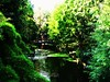 Zen Garden in London (sHaDiNa) Tags: garden park parco londonpark londra london zengarden giardinozen green verde