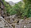 Rocks at Glen Nevis (Tatters ✾) Tags: scotland glennevis oloneo stitch rocks rowan tree