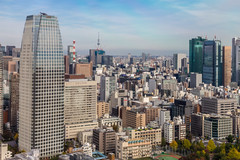 IMG_2611 (Evgeny Gorodetskiy) Tags: birdseye autumn city overlook skyscrapper tokyo japan travel minatoku tōkyōto япония jp