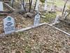 20170320_152418 (h.alfatli) Tags: bg 2017 mezar kabristan neofit bozveli bozvelievo alfatlı köyü momçilgrad