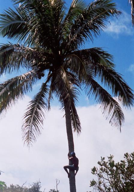 Madagascar2002 - 60