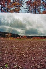 deerstand (Jan Meifert) Tags: kodak ultramaxx 400 analogue analog film 35mm deerstand high seat multi multiple double exposure mehrfachbelichtung doppelbelichtung outdoor forest wald jan meifert