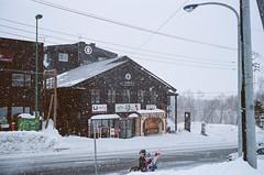 (- Dolce Vita -) Tags: kodak portra pro 400 film analog winter japan hokkaido niseko hirafu leica m6 35mm summilux preasph
