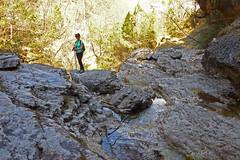 affluente del Cordevole (Tabboz) Tags: montagna escursione valle cordevole fiume torrente ruscello cime panorama pascoli sentiero