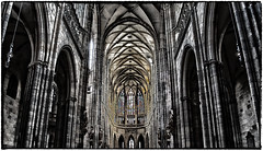 St Vitus Cathedral (Andy J Newman) Tags: coloursplash d500 colorize colorsplash cathedral church prague czechrepublic nikon architecture czech stvitus blackandwhite colorise silverefex czechia cz