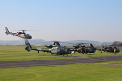 """""""Gazelle 50th"""" Anniversary Fly In (NTG's pictures) Tags: middlewallop hampshireengland gazelle50th anniversary fly in aac raf faa alat thresholdaero"""