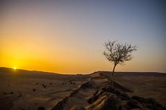 lever de soleil sur le camp (gabs_z) Tags: maroc tazzarine morroco sunset hdr