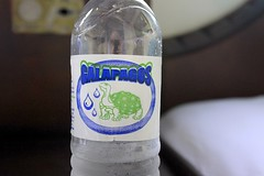 Giant Tortoise Water (oxfordblues84) Tags: galápagos galápagosislands archipelliicruise oat overseasadventuretravel travel ecuador bottle waterbottle gianttortoise baltraisland