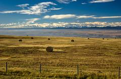 Hwy. 1A Bow Valley vistas, (Image 3) (Martin Thielmann) Tags: ab bowvalley rockymountains fenceline fogdissipatingovervalley haybalesdottingfield nearcalgarycitylimits vistafromoldbanffhwy