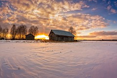 Barns And Trees In The Sunset (k009034) Tags: 500px trees sky sunset nature clouds snow evening fields countryside agriculture barn rural footprints farming springtime no people finland tranquil scene copy space oulainen matkaniva teamcanon