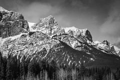Mount Rundle (asphotographics) Tags: topography mountrundle canadianrockies landscape alpine nature asphotographics country monochrome postprocessing forest blackandwhite montane canmore canada naturalfeature ecosystem groundcover mountain alberta ca