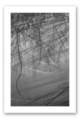 Dunes 03 (Plage du Nord de la France) (Franck Huet) Tags: leica m3 summarit 50 mm ilford delta 100 asa perceptol dunes dune sable sand countryside nord france haut black white noir blanc blanco negro oyat