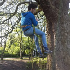 Photo of Prussik and abseil training in the park thanks to @themumc