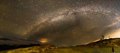 Mary's Peak, Oregon (Justin Knott) Tags: way nikon f14 peak marys 24mm milky d600 rokinon