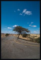 On the road - Tanzanie (GuillaumeR-photos) Tags: canon 1022 tanzanie 70d guillaumer
