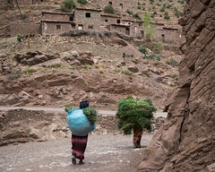 O es-tu libert? (cafard cosmique) Tags: africa montagne photography photo foto image northafrica femme morocco maroc atlas maghreb marruecos marokko marrocos afrique afriquedunord  labeur zaouiatahansal