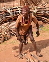 Heavy Bundle of Sticks, Hamer, Ethiopia (Rod Waddington) Tags: africa woman sticks traditional tribal valley strong ethiopia tribe bundle heavy ethnic load hamer ethiopian omo demeka