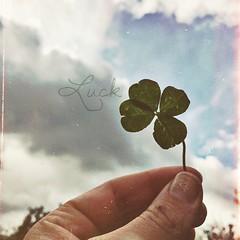 I found the Luck. | Ich fand das Glück.   #kiraton #day #autumn #de #holiday #hooray #hoorayfortoday #kiratontravel #travel #travelblog #travelingram #traveltheworld #worlderlust  #abenteuer #ignice #igtravel #enjoy #glück #luck #fun #igweather #igtravelt