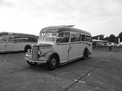 TMY700 (Lodge Coaches) 21-09-2014 Duxford Showbus.2 (routemaster2217) Tags: transport duxford lodges imperialwarmuseum iwm lodgecoaches showbus2014
