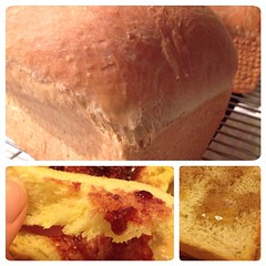 "The recipe for 1840 Farmhouse Brioche is finally here!   http://1840farm.com/2014/09/farmhouse-brioche/ • <a style=""font-size:0.8em;"" href=""http://www.flickr.com/photos/54958436@N05/15204483747/"" target=""_blank"">View on Flickr</a>"