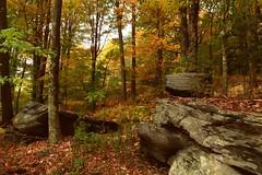 Fall rocks (edenseekr) Tags: autumn outcrop rock rural woodlands fallfoliage bluestone heldeberg