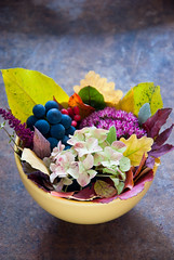 Autumn Bouquet (letterberry) Tags: wood old november autumn winter red stilllife orange brown plant green nature colors yellow fruit dark season outdoors gold design rainbow october berries purple rustic decoration rusty bowl dirty september falling grapes gradient backgrounds hydrangea organic copyspace multicolored decor textured freshness barberry vibrantcolor colorimage beautyinnature autumndecoration