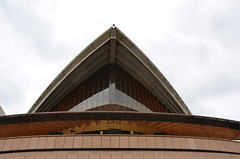 226 Sydney Opera House (johnjennings995) Tags: sydney operahouse sydneyoperahouse