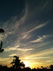 Sunset (craighossack74) Tags: trees sunset sun clouds florida palm cirrus