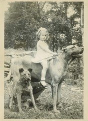Giddyup! (sctatepdx) Tags: dog snapshot vernacular vintagedog oldsnapshot vintagesnapshot