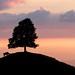 Sonnenuntergang auf Ahornalp, mit Blick übers Emmental