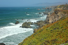 Coleman Beach, Sonoma Coast State Park, CA (Four75 Photography) Tags: california road trip pacific roadtrip pacificocean sonomacoaststatepark colemanbeach norcalcoast