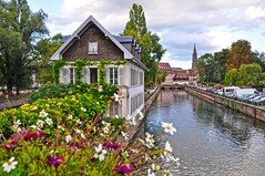 Petit France, Strasbourg (yonca60) Tags: flowers france building river canal strasbourg ill alsace petitfrance theill