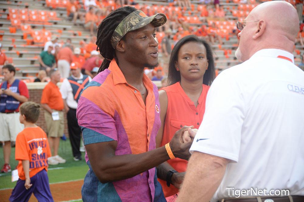 Clemson Photos: 2013, De Andre  Hopkins, Football, Georgia
