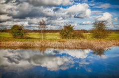 Canal HDR (anthonydowdall) Tags: royalcanal hdr canon canon5dmarkii 24105mml landscape landscapephotography