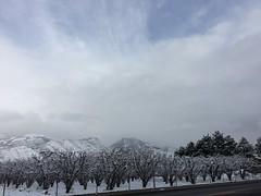 IMG_2230 (augiebenjamin) Tags: winter provocanyon mountains orem provo lindon utah snow clouds trees sky byu brighamyounguniversity art