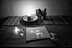 Dream Journal (Wroot Down) Tags: light abstract exposure long painting night dark art black design illustration glow drawing white glowing photography artistic abstraction electric longexposure lightpainting energy magic glows blackandwhite stencil lightstencil dream moose skeleton glowstick candle conceptual hand feather quill nikond600 d600 nikon nikkor2485mmf3545 flash carpenoctem originalphotography original indoors stilllife