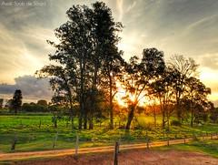 Amazing Sunset in Umuarama-PR, brazil (asaffsaabdesouza) Tags: sunset sun sky skychaser amazingsky skyfire beautiful beautifulclouds beautifulsky natureza paraná landscapenature amazingclouds camporural campo