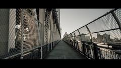 Deserted (Panda1339) Tags: 28mm usa manhattanbridge summiluxq cinematic nyc newyorkcity architecture streetphotography leicaq anamorphic crop 241