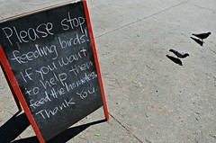 First & Hope (Pedestrian Photographer) Tags: los angeles la southern california socal cali 2017 walk april first 1 dsc6884b please stop feed feeding birds if you want help then homeless thank red sign hope ribbet