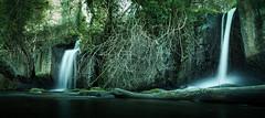 Two ways (Massimiliano Teodori) Tags: montegelato canon6d canonef1635f4lis valledeltreja cascate parco treja longexposure lungaesposizione waterfall water forest