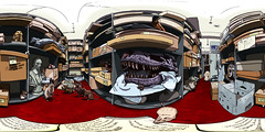 The Museum Store (»alex«) Tags: museum store artefacts artifact folkestonelibrary tyrannosaurusrex trex skull fossil rats cat book boxes lecture history story williamharvey bust statue bones indianajones topsecret nimh spiders illustration panorama 360x180 equirectangular 360degrees drawing panoramic ricohtheta